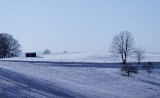 Frost allerorten